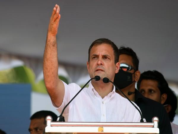 Congress MP Rahul Gandhi (File photo)