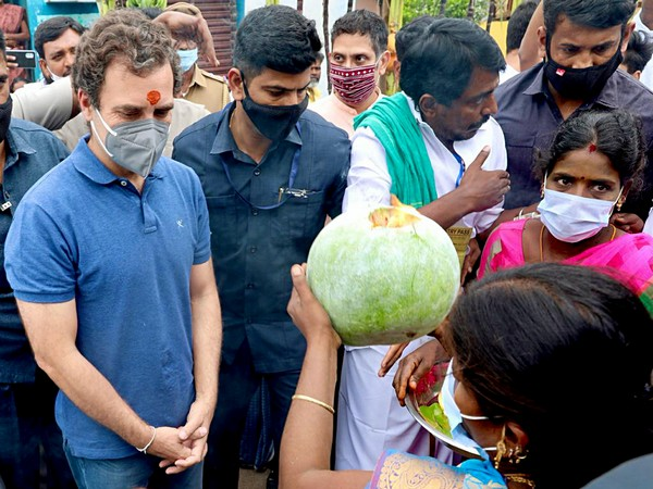 Photo from Congress leader Rahul Gandhi's Madurai visit on January 14, 2020