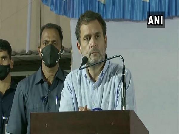 Congress leader Rahul Gandhi (Twitter/ANI)