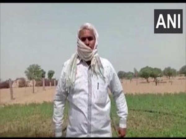 Sheeshpal, a farmer describing about locust attack in Rajasthan.