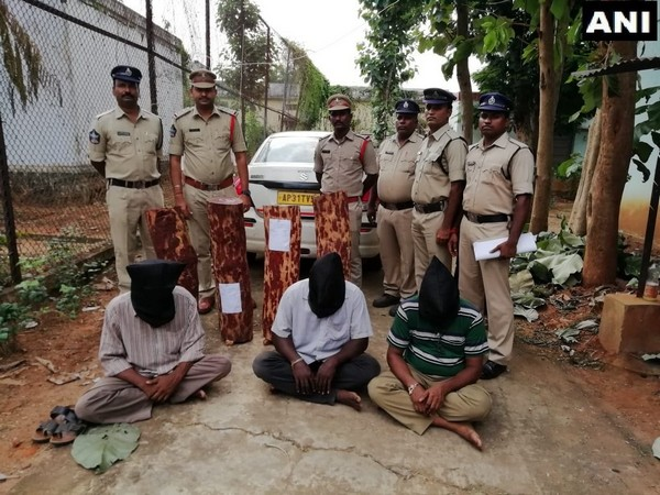 Pathapatnam police arrested three persons for smuggling red sandalwood in Andhra Pradesh. Photo/ANI