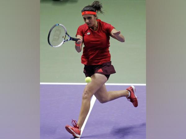 India tennis star Sania Mirza (file image)