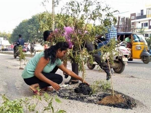 Locals planted trees inside potholes in Hyderabad's Peerzadiguda in Telangana on November 17. Photo/ANI