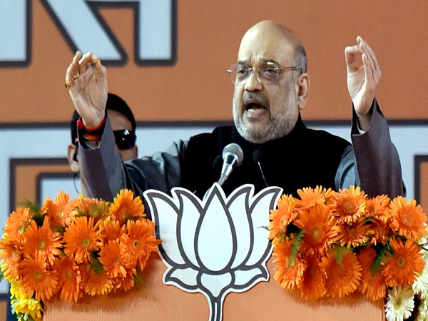 BJP national president and Union Home Minister Amit Shah (File photo)