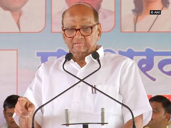 NCP chief Sharad Pawar. File photo/ANI
