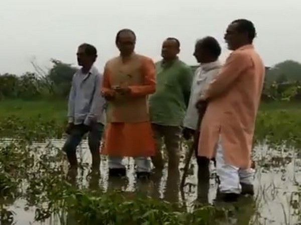 Shivraj posted a video on his Twitter in which he is seen standing in knee-deep water in a crop field on Thursday. Photo/Twitter@ChouhanShivraj