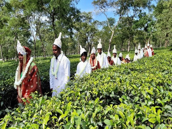The married couples at a tea garden in Siliguri, West Bengal.