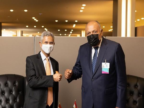 External Affairs Minister S Jaishankar with his Egyptian counterpart Sameh Shoukry.