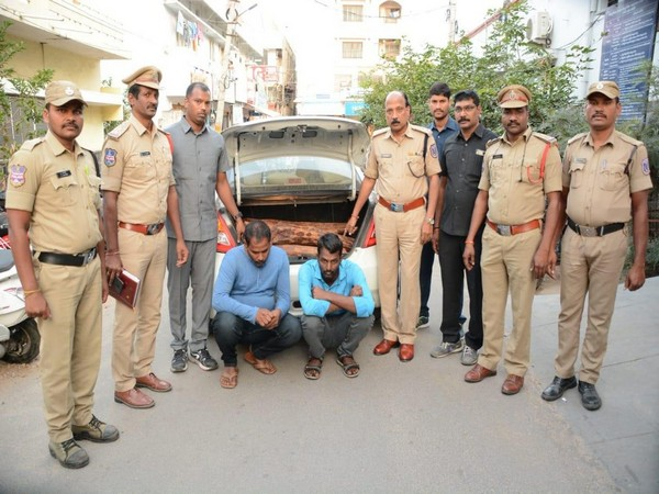 Two arrested and 137 kg red sandalwood seized in Telangana by the police