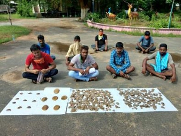 The forest department has seized almost 4 kg of pangolin scales.