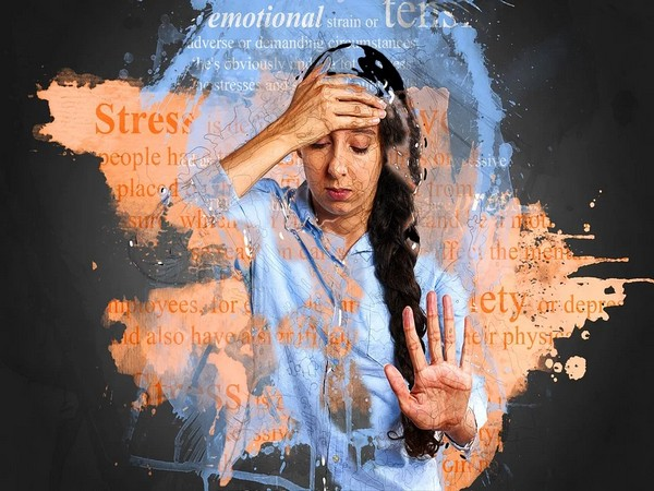 According to a study, 38 per cent of the surveyed people felt that their stress levels skyrocket during the holidays.