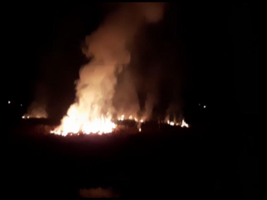 Stubble being burned in Ambala, Haryana. Photo/ANI