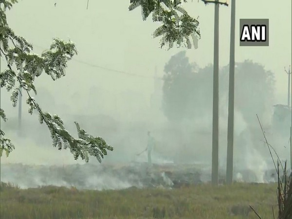 Farmers in Punjab continue with stubble burning. Photo/ANI
