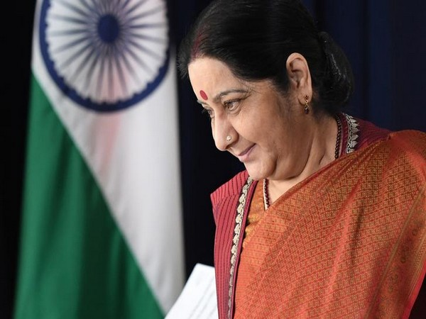Former External Affairs Sushma Swaraj (File photo)