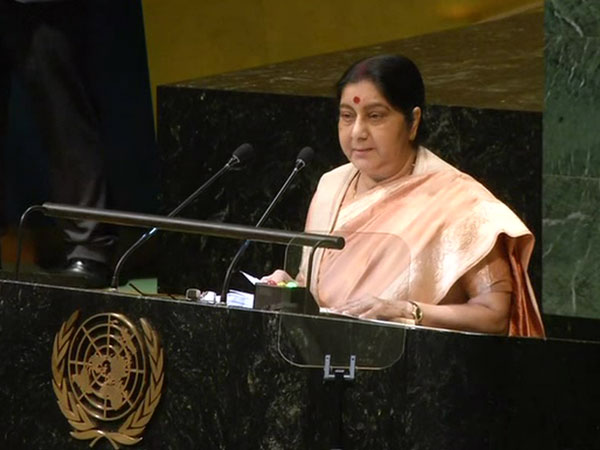 Former External Affairs Minister Sushma Swaraj at the UN General Assembly last year (file photo)