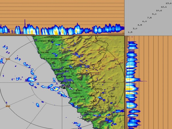 Visual representation of rains in Goa (Photo/Twitter)