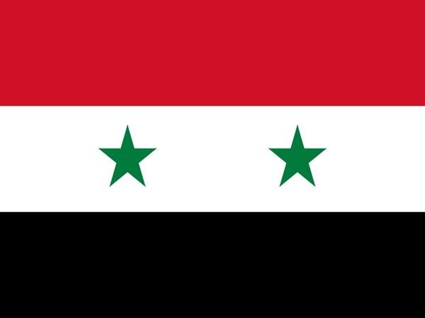 Flag of Syria (representative image)