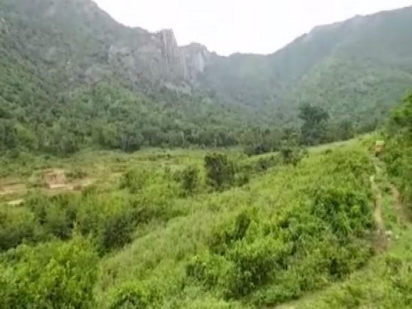 Periyanaickenpalayam forest range