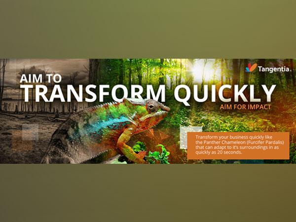 Aim to Transform Quickly
