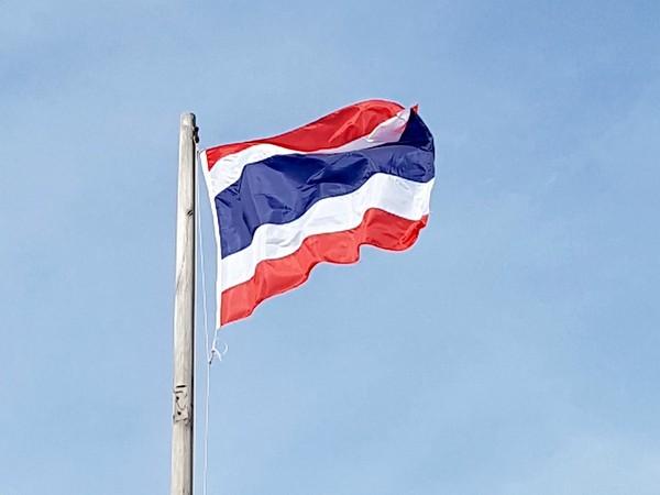 Flag of Thailand (representative image)