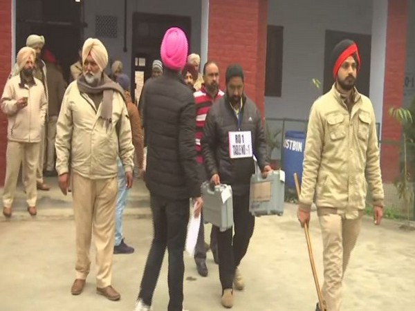 Counting underway for Punjab local body elections on Wednesday. (Photo/ANI)