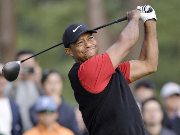 Ace golfer Tiger Woods (file image)