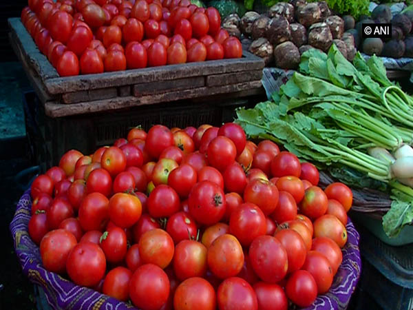Tomatoes being sold in a market. File photo