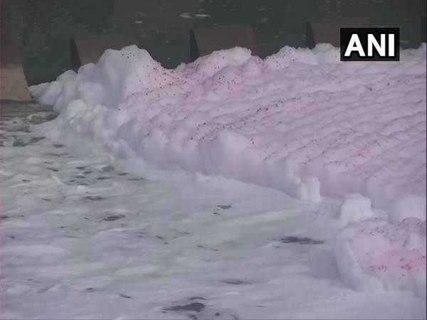 Toxic foam was seen floating in the Yamuna river at Kalindi Kunj on Tuesday. (Photo/ANI)