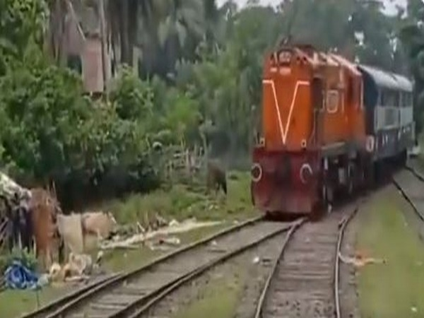 India's first parcel train to Benapole