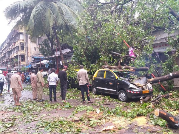 tree falls on a car injuring two people