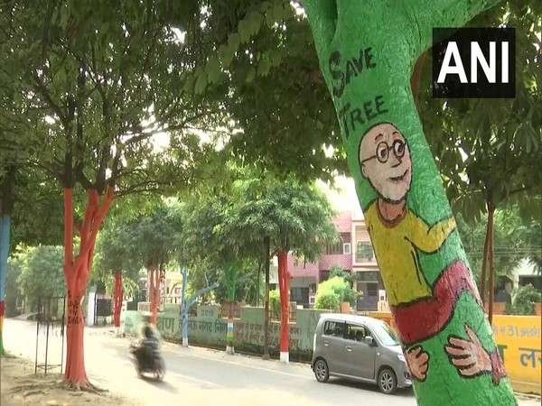 Visuals of trees painted with colours in Gomti Nagar, Lucknow.