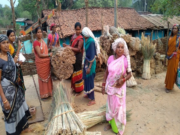 Tribal villagers of Narayanpur have been traditionally manufacturing 'phuljhadu' (brooms). Photo/ANI