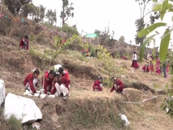 School children in Udhamour took part in tree plantation drive on Friday [Photo/ANI]