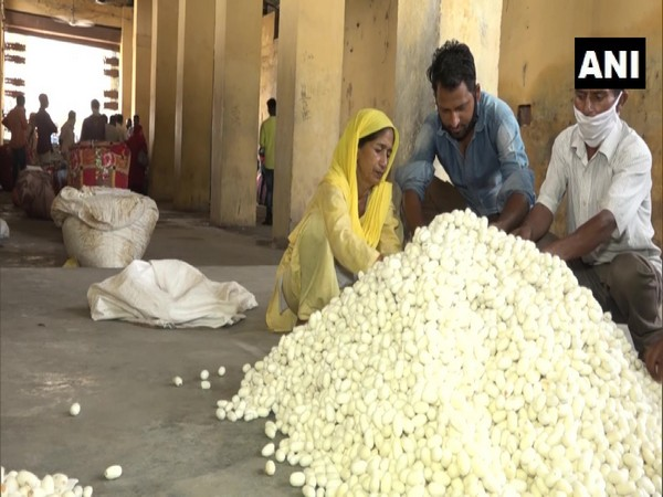 A silk production factory in Udhampur, Srinagar. (Photo/ANI)
