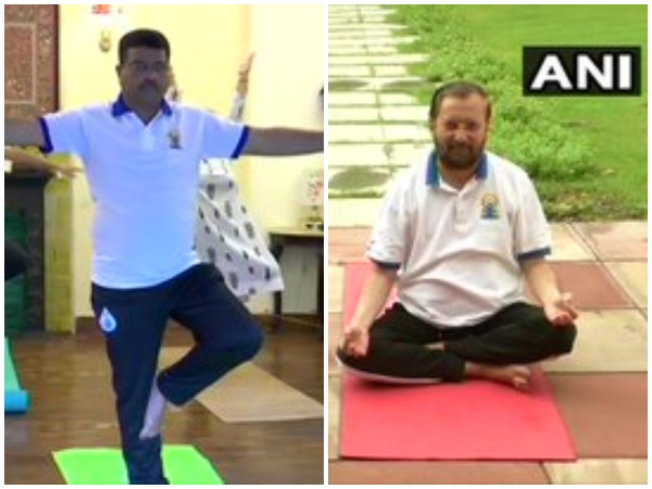 Union Ministers Dharmendra Pradhan, Prakash Javadekar performed yoga on International Yoga Day.