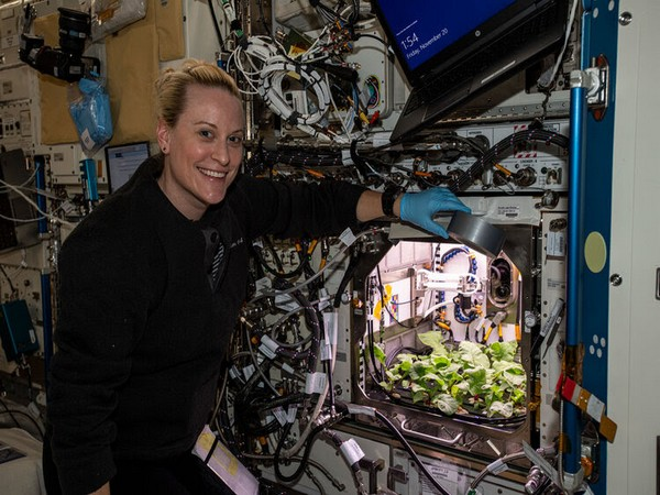 NASA astronaut Kate Rubins poses next to a thriving radish crop growing inside the Advanced Plant Habitat in the International Space Station. (Photo: ESA)