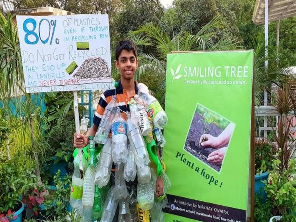 Aarav Kwatra Smiling Tree