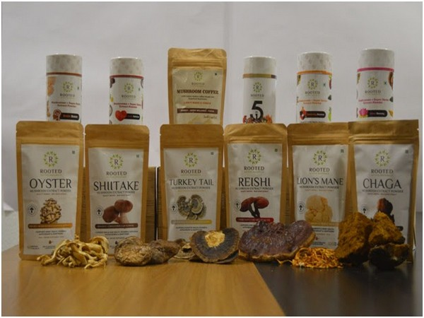 The assorted range of medicinal mushroom extracts and superfood mixes from Rooted Actives
