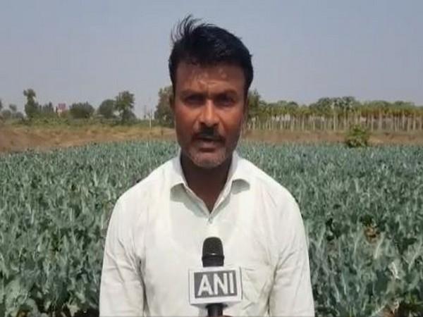 Mahindra Nikam, Nashik farmer speaking to agency. (Photo/ANI)
