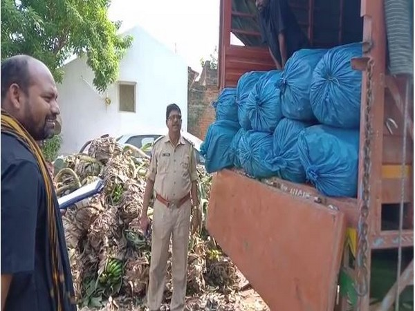 Visual of lorry from which cannabis was recovered in Visakhapatman on Tuesday.