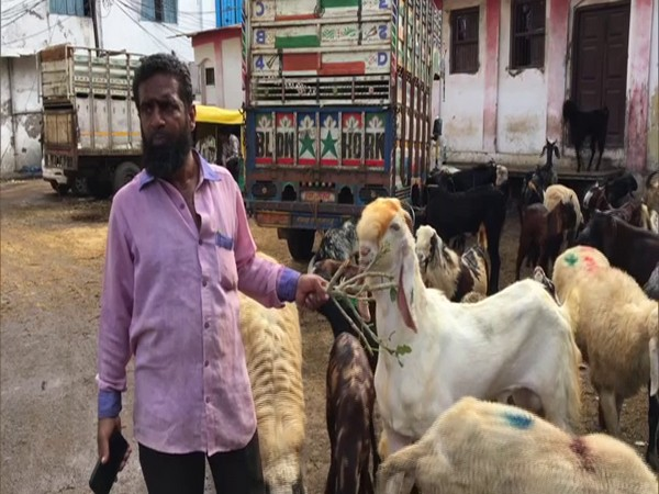 A trader with his goats at the Bakri Bakra Mandi in Indore. (Photo/ANI)