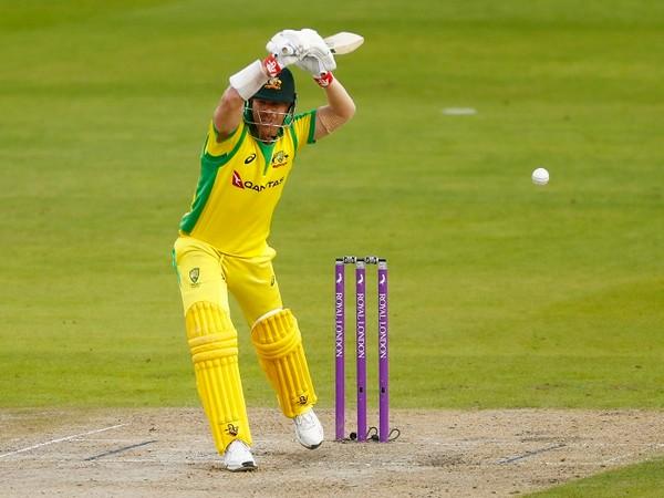 Australia's opening batsman David Warner (file image)