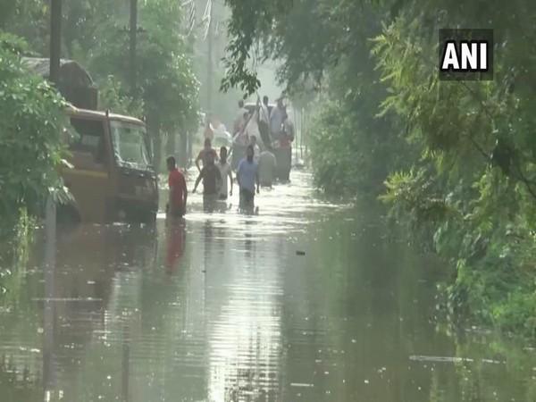 People wading through waterlogged streets in Ambala in Haryana on Monday. Photo/ANI