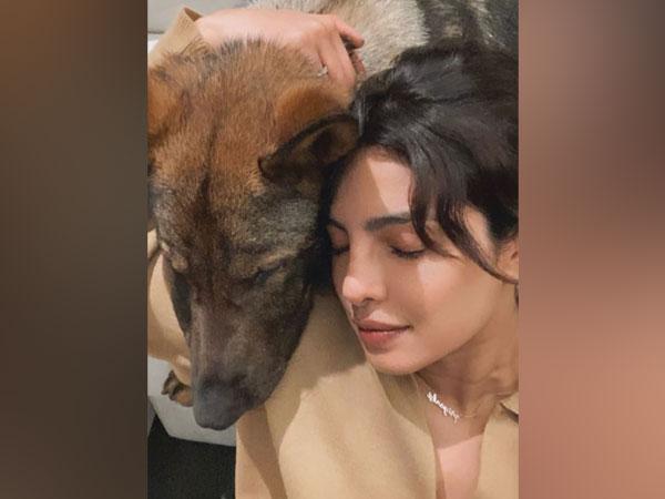Priyanka Chopra with her dog Gino (Image source: Instagram)