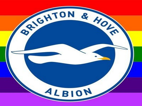 Brighton and Hove Albion logo (Photo/ Brighton and Hove Albion Twitter)