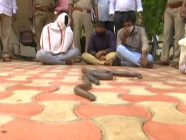 Accused persons with the seized snakes (Photo/ANI)