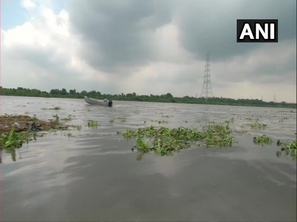 Visuals of Yamuna river on Friday. Photo/ANI