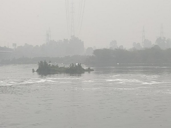 A visual of Yamuna river (File photo)
