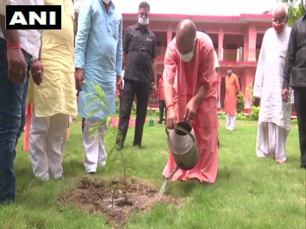 Uttar Pradesh CM Yogi Adityanath plants sapling in Gorakhpur.