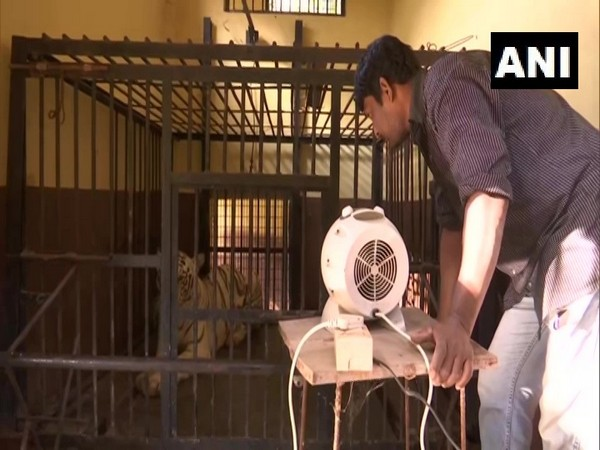 Heaters placed outside the enclosure of Tiger at Guwahati Zoo